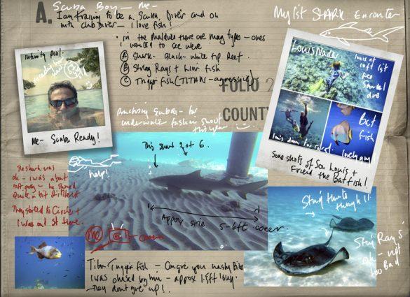 Maldives Underwater Composite