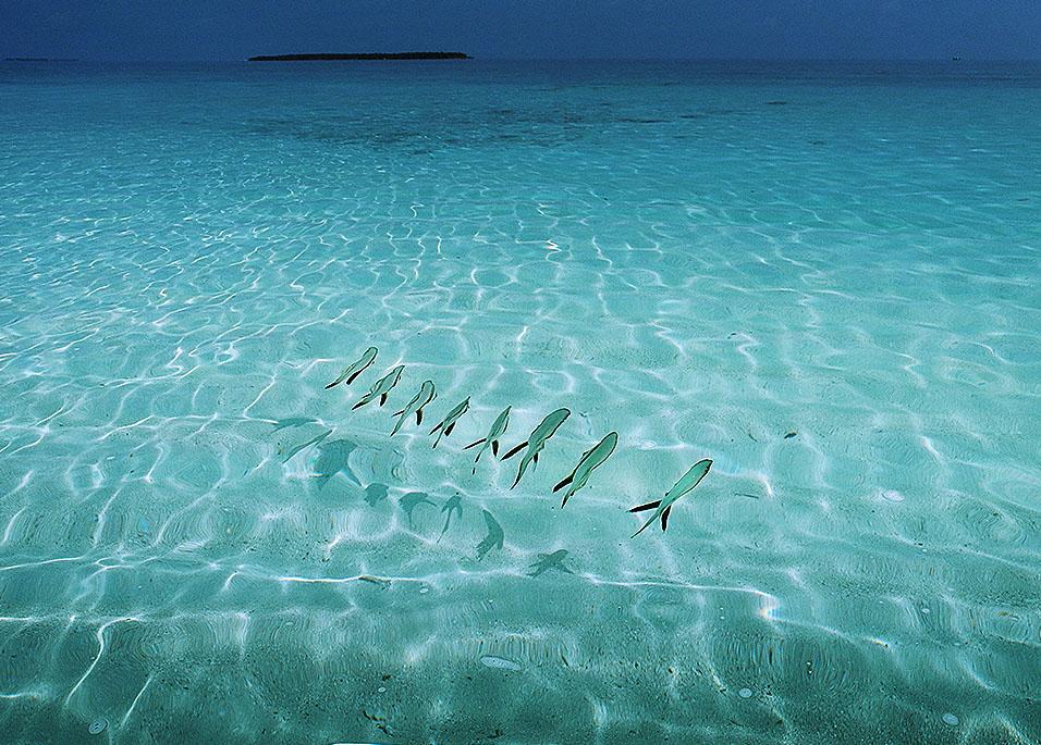 james nader maldives shoot2